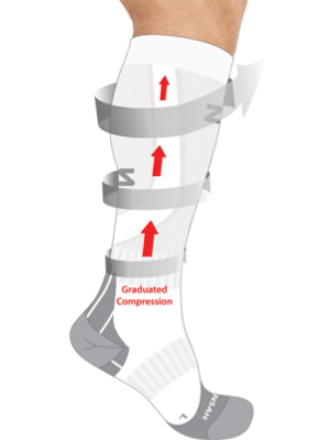 Palisades Vein Center Compression Stockings